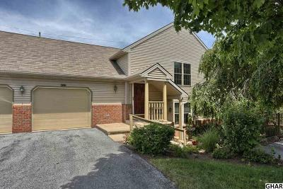 Hershey Single Family Home For Sale: 29 Bromley Court