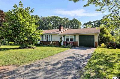 Duncannon Single Family Home For Sale: 4 Ankajam Drive