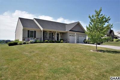 Single Family Home For Sale: 287 Kimberly Lane