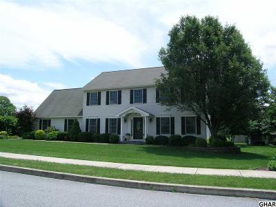 Etters Single Family Home For Sale: 199 Alanthia Lane