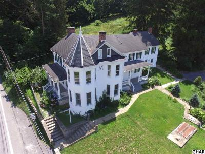 Newville Single Family Home For Sale: 1804 Walnut Bottom Road