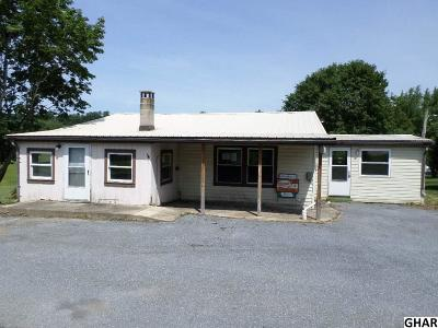 Duncannon Single Family Home For Sale: 251 Windy Hill Rd