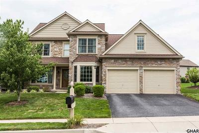 Hummelstown Single Family Home For Sale: 100 Quail Ct.