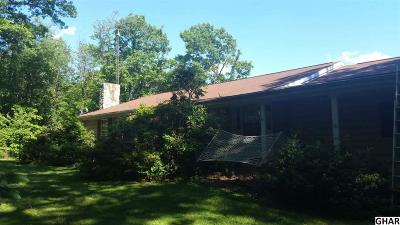 Dillsburg Single Family Home For Sale: 101 Tower Rd