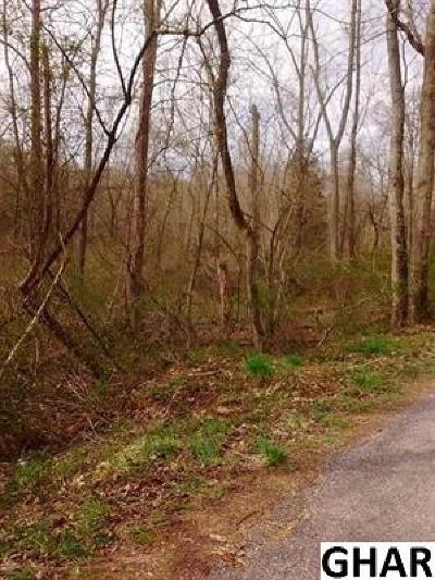 Mechanicsburg Residential Lots & Land For Sale: 17 Acres McCormick Road