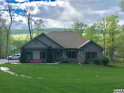 Harrisburg Single Family Home For Sale: 571 Blue Mountain Parkway