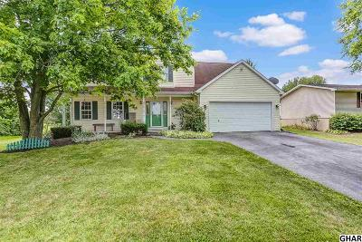Single Family Home For Sale: 18 Sedgwick Drive