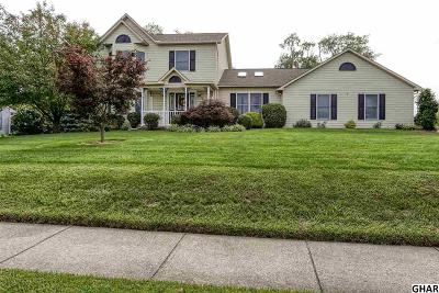 Middletown Single Family Home For Sale: 1769 Mountain View Drive