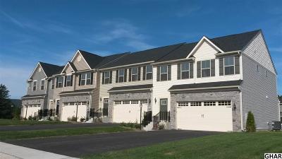 Harrisburg Single Family Home For Sale: 4133 Secretariat Street