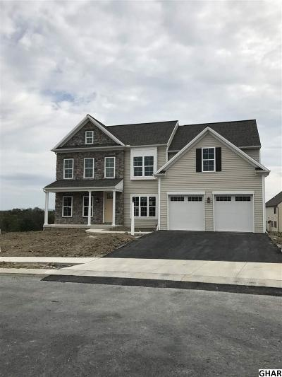 Mechanicsburg Single Family Home For Sale: 61 Shelduck Lane