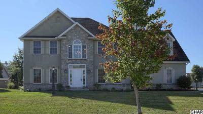 Boiling Springs Single Family Home For Sale: 105 Creamery Road