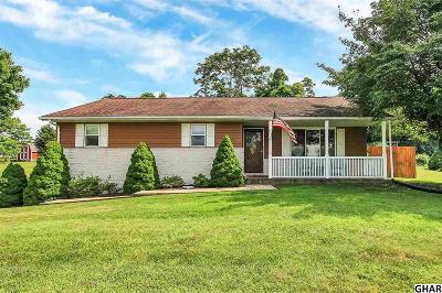 Hummelstown Single Family Home For Sale: 19 Cheltenham Drive