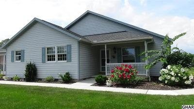Carlisle Single Family Home For Sale: 28 Strawberry Dr