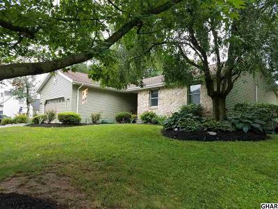 Palmyra Single Family Home For Sale: 223 Pineview Drive