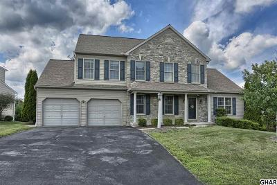 Hummelstown Single Family Home For Sale: 204 Blue Jay Way