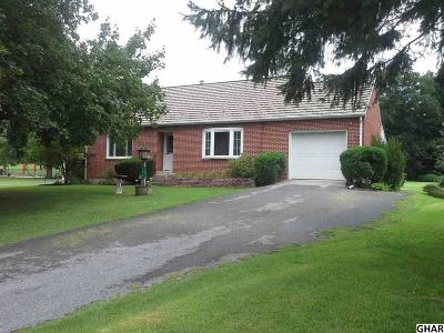 Hummelstown Single Family Home For Sale: 392 Pleasantview Road