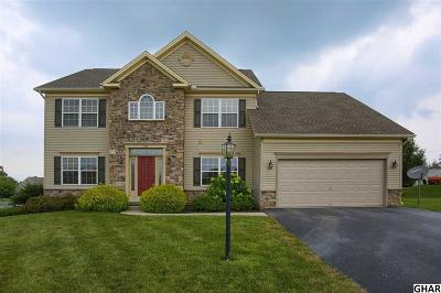 Carlisle Single Family Home For Sale: 307 Forgedale Drive