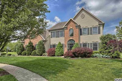 Hummelstown Single Family Home For Sale: 2240 Packard Circle