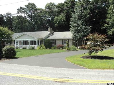 Hummelstown Single Family Home For Sale: 911 Hill Church Rd