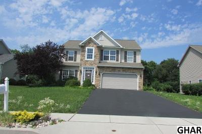 Cumberland County Single Family Home For Sale: 135 West View