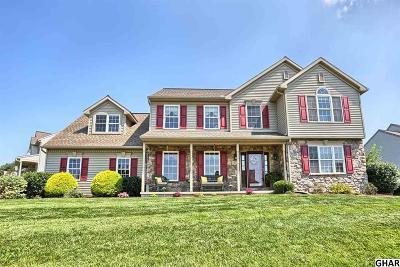 Harrisburg Single Family Home For Sale: 766 Deer Forest Road