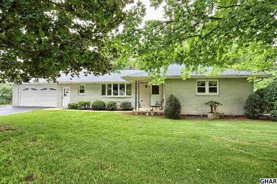 Single Family Home For Sale: 493 Petersburg Road
