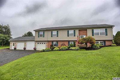 Duncannon Single Family Home For Sale: 17 Mahanoy Valley Rd