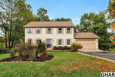 Single Family Home For Sale: 13 Pleasanton Drive