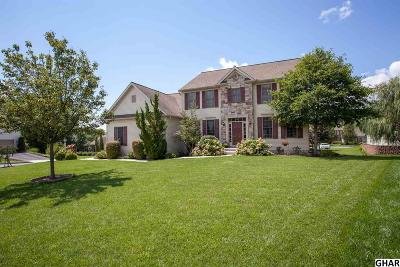 Mechanicsburg Single Family Home For Sale: 1221 Chelsen Cross
