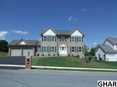 Harrisburg Single Family Home For Sale: 7328 Main Street