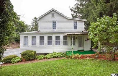 Enola Single Family Home For Sale: 318 Wertzville Road