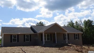 Duncannon Single Family Home For Sale: 263 Mahanoy Valley Rd