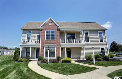 Hummelstown Single Family Home For Sale: 715 Stag Court