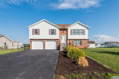 Shippensburg Single Family Home For Sale: 239 Grove Drive