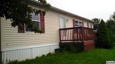 Shippensburg Single Family Home For Sale: 9 Robin Drive
