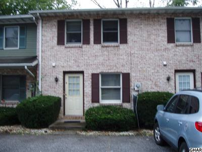 Mechanicsburg Rental For Rent: 4800 Charles Road #E