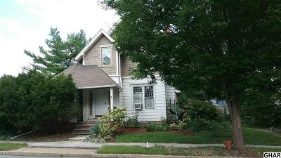 Newville Single Family Home For Sale: 75 N High