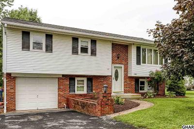 Enola Single Family Home For Sale: 1965 Randall Road