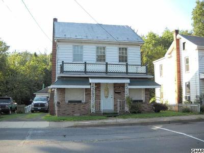 Duncannon Single Family Home For Sale: 1004 Market Street