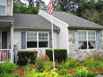 Duncannon Single Family Home For Sale: 59 Petersburg Lane