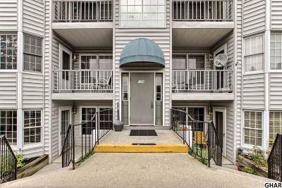 Mechanicsburg Single Family Home For Sale: 126 W Portland Street
