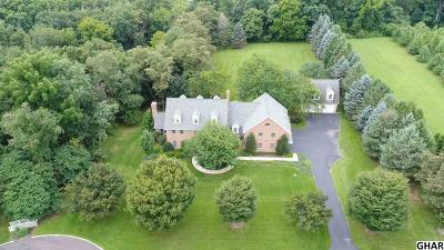 Hummelstown Single Family Home For Sale: 3 Fox Run