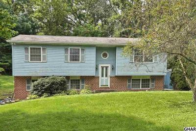 Newville Single Family Home For Sale: 220 Springfield Road
