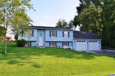 Single Family Home For Sale: 96 Curtis Drive