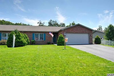 Carlisle Single Family Home For Sale: 20 Ridge Avenue