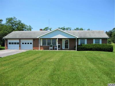 Shippensburg Single Family Home For Sale: 1087 Mud Level Rd