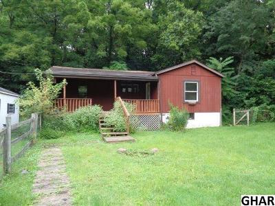 Mechanicsburg Single Family Home For Sale: 541 Good Hope Road