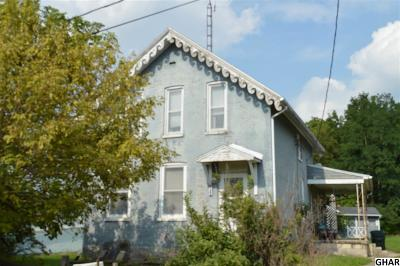 Shippensburg Single Family Home For Sale: 249 S Earl