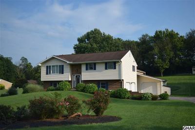 Carlisle Single Family Home For Sale: 2712 Ritner Highway