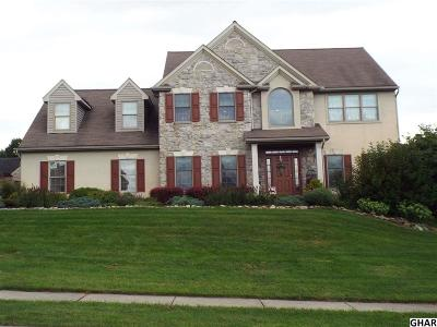 Single Family Home For Sale: 1325 Springhouse Road